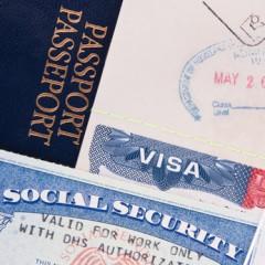 Sozialversicherung, Entsandte, Expatriates